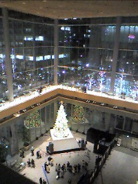 Christmas%20tree_resize.jpg