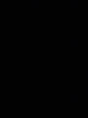 Black_resize.jpg