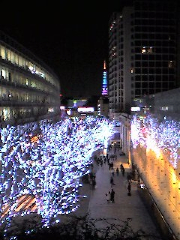 Christmas%20Tokyo%20Tower_resize.jpg