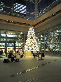Christmas%20Tree%20%E4%B8%B8%E3%81%AE%E5%86%85_resize.jpg