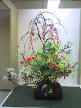 Flowers%20Shidare.jpg