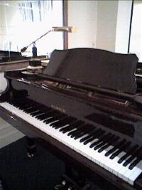 Piano%203_resize.jpg