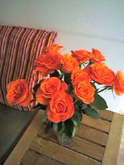Roses_resize.jpg