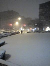Snow_resize.jpg