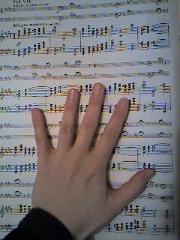 hand_resize.jpg